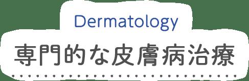 Allergy 専門的な皮膚病治療